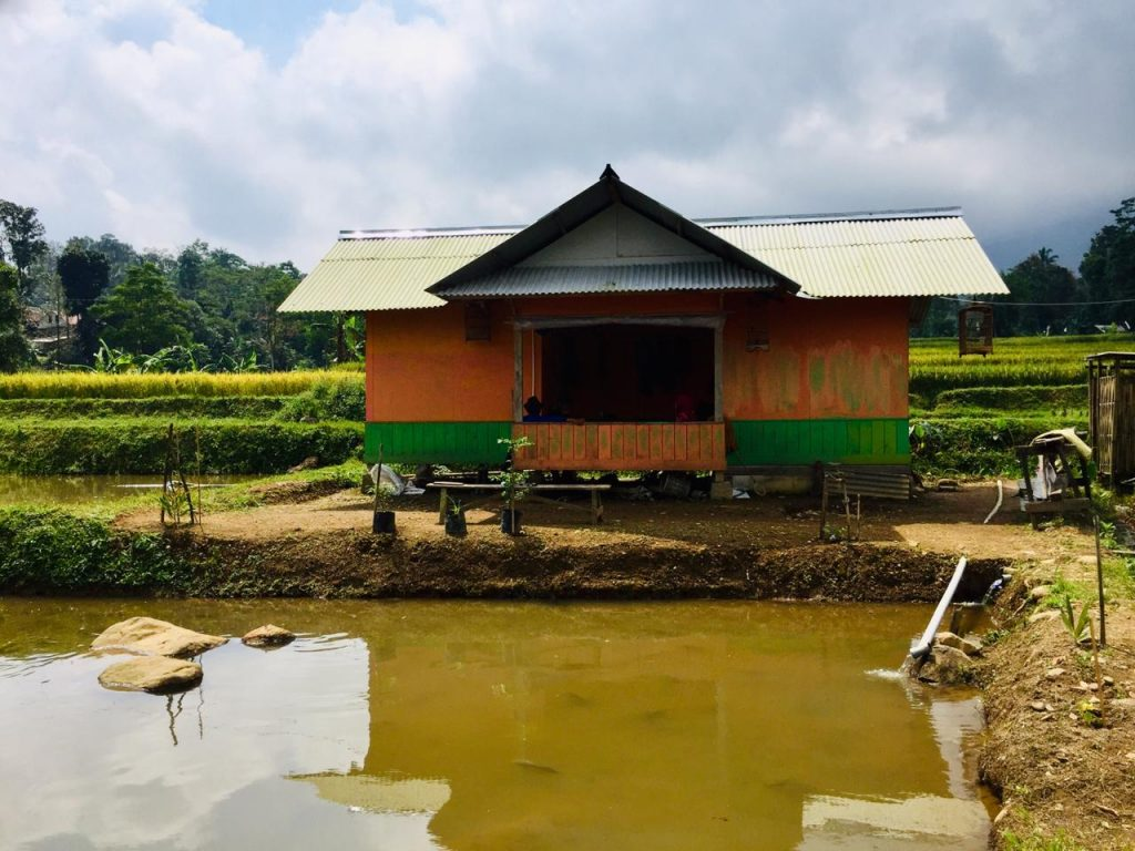 Jual Tanah Produktif di Wanayasa